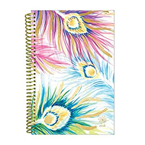"bloom daily planners 2018 Calendar Year Daily Planner (January 2018 to December 2018) - Weekly & Monthly Agenda - Passion/Goal Organizer - 6"" x 8.25"" - Peacock Feathers"