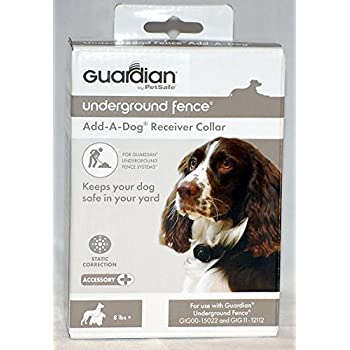 Amazon Com Guardian By Petsafe In Ground Fence Receiver