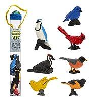 Safari Ltd  Backyard Birds TOOB