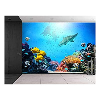 Large Wall Aquarium with Groups Sharks and Sunny...
