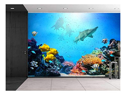 Large Wall Mural Aquarium with Coral Reef Colorful Fish Groups Sharks and Sunny Sky Shining through Clean Ocean Water Vinyl Wallpaper Removable Decorating