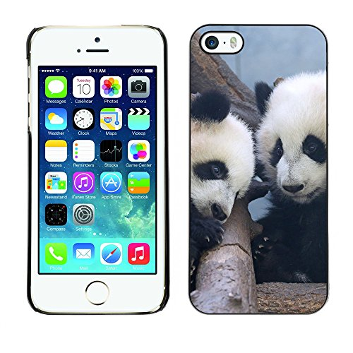 Premio Sottile Slim Cassa Custodia Case Cover Shell // F00019545 pandas bébé // Apple iPhone 5 5S 5G