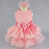 #3: Fitwarm Luxury Pink Lace Dog Tutu Dress Pet Wedding Clothes Shirts + Matching Hair Clip, Pink, Small