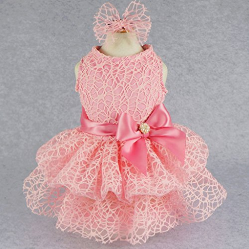 Fitwarm Luxury Pink Lace Dog Tutu Dress Pet Wedding Clothes Shirts + Matching Hair Clip, Pink, - Dog Fancy Dress