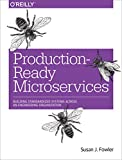 Production-Ready Microservices: Building Standardized Systems Across an Engineering Organization Kindle Edition