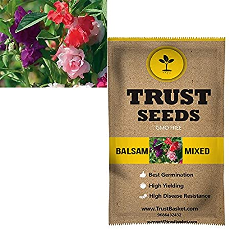 TrustBasket Balsam mixed Flowers Seeds (GMO Free)