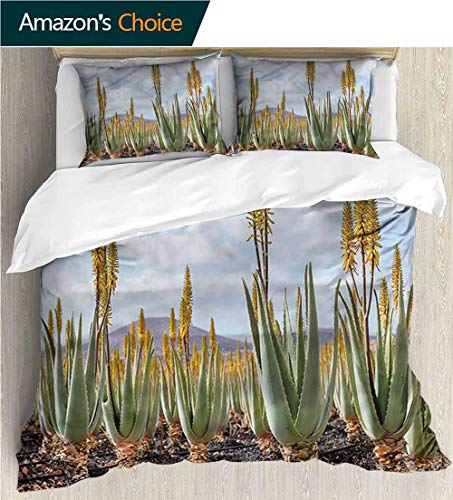 (carmaxs-home Modern Pattern Printed Duvet Cover,Box Stitched,Soft,Breathable,Hypoallergenic,Fade Resistant 100% Cotton Beding Linens for Kids Children-Plant Aloe Vera Plantation (68