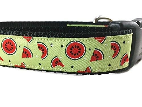 Medium 13-19\ Summer Dog Collar, Caninedesign, Watermelon, 1 inch Wide, Adjustable, Nylon, Medium and Large (Watermelon, Medium 13-19 )