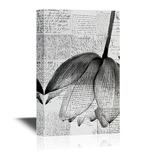 Black and White Lotus Flower with Retro Style Background Gallery