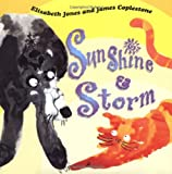 Sunshine and Storm, Elisabeth Jones, 1929927274