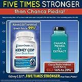 Kidney COP Calcium Oxalate Protector 120