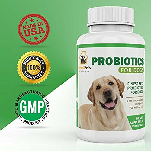 #1 Premium Finest Pets Probiotic Supplement For Dogs. Manufactured In The USA, , 120 Capsule Pills Helps Reduce Diarrhea, Allergies, Itching, Bloating, Upset Stomach And Bad Breath