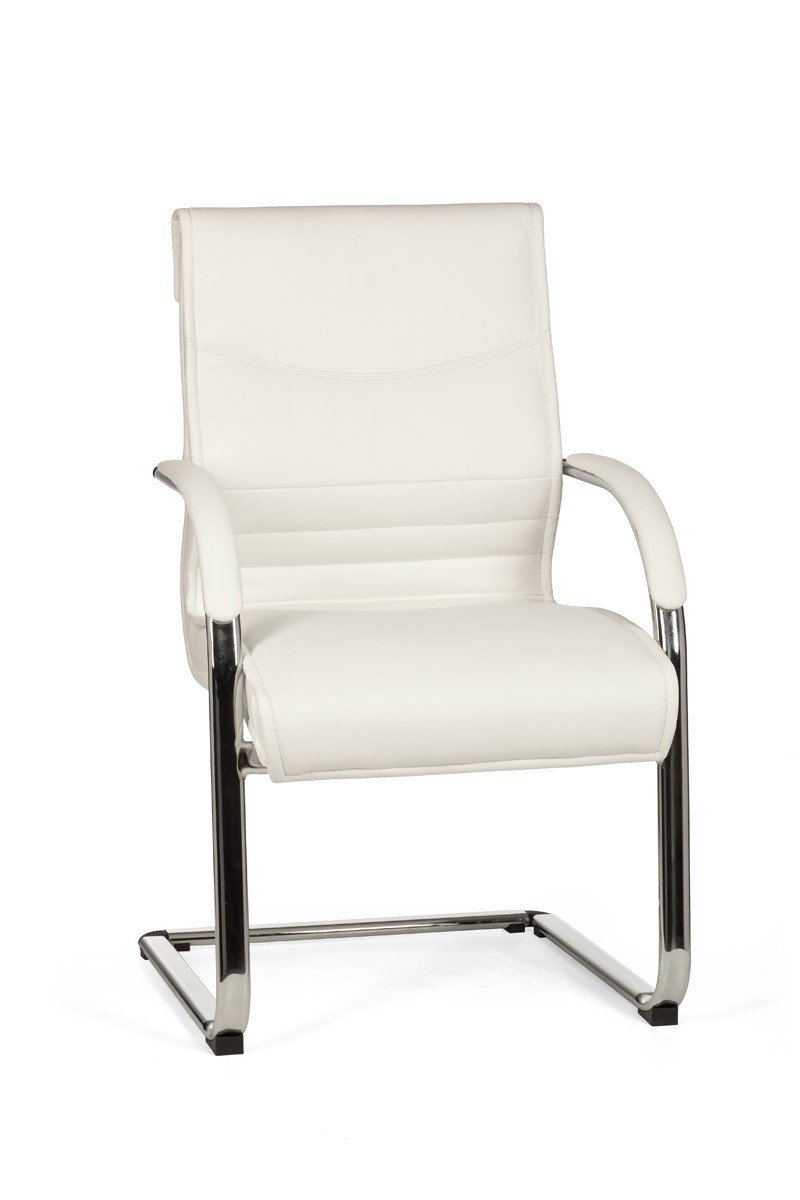 FineBuy Freischwinger Kunstleder Besucherstuhl mit Armlehne Schwingstuhl Stuhl