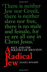 A Radical Jew: Paul and the Politics of Identity (Contraversions: Critical Studies in Jewish Literature, Culture, and Society)