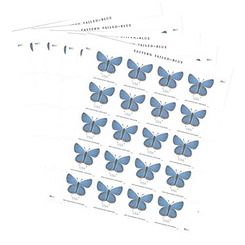 Eastern Tailed-Blue 5 Sheets of 20 Two-Ounce Forever Stamps, Greeting Card, Square envelopes, Wedding Stamps (100 Stamps)