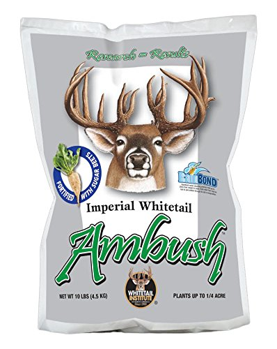 Whitetail Institute Imperial Ambush (New) Food Plot Seed (Fall Planting), 10-Pound