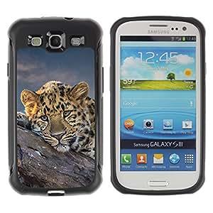 Be-Star único patrón Impacto Shock - Absorción y Anti-Arañazos Funda Carcasa Case Bumper Para SAMSUNG Galaxy S3 III / i9300 / i747 ( African Cheetah Big Cat )