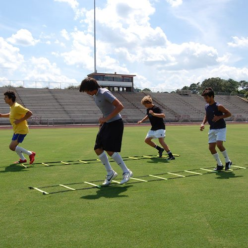 30 ft speed agility ladder - 2