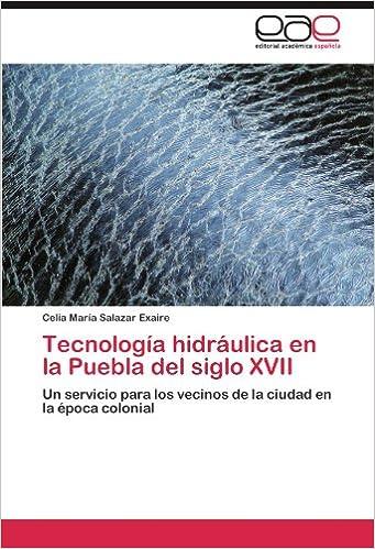 Tecnología hidráulica en la Puebla del siglo XVII: Un servicio para los vecinos de la ciudad en la época colonial (Spanish Edition): Celia María Salazar ...