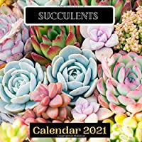 Succulents Calendar 2021