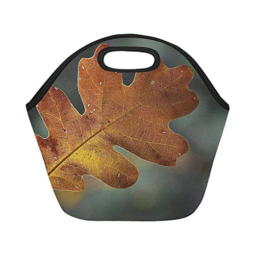 Transparent Leaf Bag - Insulated Neoprene Lunch Bag Leaf Autumn Frame Transparent Shine Through Large Size Reusable Thermal Thick Lunch Tote Bags For Lunch Boxes For Outdoors,work, Office, School