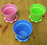 "6 Plastic Flower Pots with Saucers - 4"" (Pink, Blue & Green)"