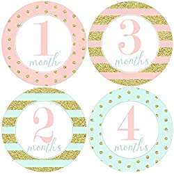 Gift Set of 12 Round Keepsake Photography Monthly Baby Stickers with Pink, Mint and Gold Glitter Like Polka Dots MOSG157