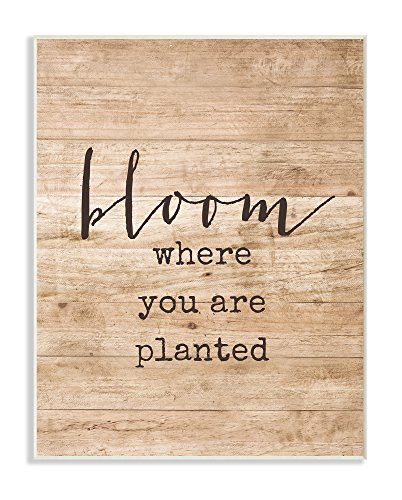 (Stupell Home Décor Bloom Where You're Planted Wall Plaque Art, 10 x 0.5 x 15, Proudly Made in USA)