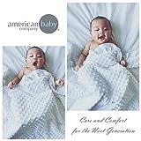 American Baby Company Heavenly Soft Minky Dot
