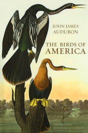 (The Birds of America)