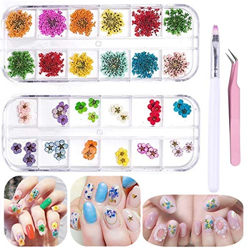 Nail Natural Real Dried Flowers Flower Kit - 36 Five Flowers and 24 Starry Flowers 3D Nails Decal Preserved Manicure Flowers Stickers (2boxes/60pcs)