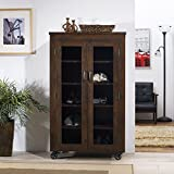 Dolinger Mobile Wooden Storage Cabinet with Glass Panels