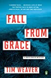 Fall from Grace: A David Raker Mystery