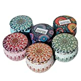 Leiqin DIY Candle Making Kit, Travel Candle Tin Storage Case Containers Metal Jar for Soy Wax Candle-6PCS