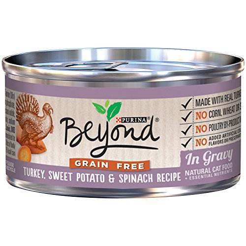 Best Natural Wet Cat Food Grain Free  Purina Beyond Treats F