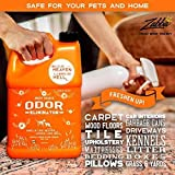 ANGRY ORANGE Ready-to-Use Citrus Pet Odor