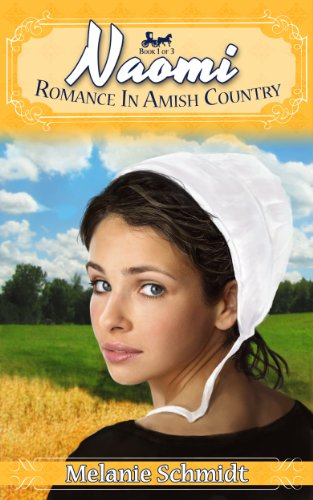 Naomi's Story: A Romance in Amish Country Story by [Schmidt, Melanie]