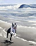 """Boston Terrier"" Dog Art Print Signed by Artist DJ Rogers"