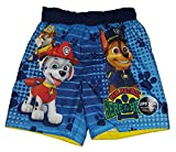 Toddler Boys Paw Patrol Here to Hear Blue Swim Short Trunk - 2T