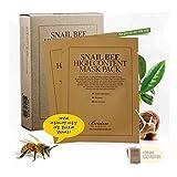 Benton Benton Snail Bee High Content Sheet Mask Pack, 10 pieces