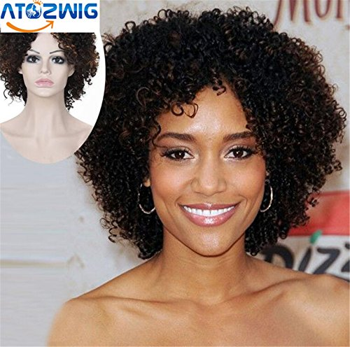 [ATOZWIG Short Brown Ombre Wig Short Wigs For Black Women Kinky Curly Afro Wig Synthetic Hair Wigs For Women Perruque] (Curly Wigs For Black Hair)
