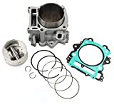 Cylinder Piston Gasket Top End Rebuild Kit for Yamaha Grizzly 660 2002-2008 & Yamaha Rhino 660 2004-2007 & Yamaha Raptor 660R 2001-2005 102mm 686cc