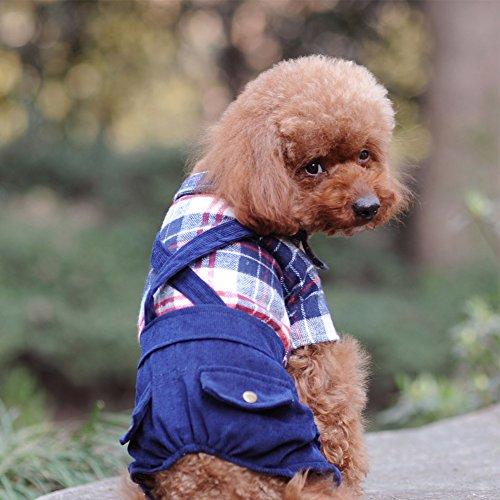 Fosinz Pet Dog Plaid Shirts Clothes Puppy T Shirt Belt (Buffalo Plaid Pet Carrier)