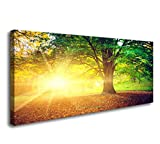 Cao Gen Decor Art-H41250,Canvas Prints Framed Wall Art Yellow Trees and Sunsea Paintings Printed Pictures Stretched for Home Decoration