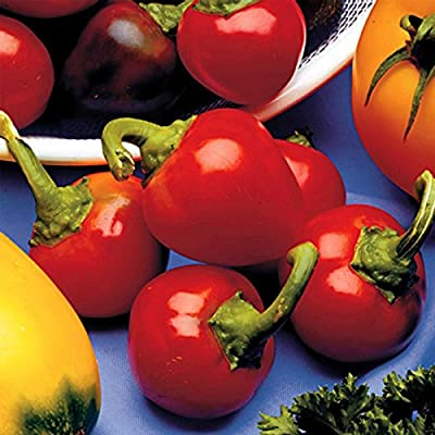 Red Cherry Sweet Pepper Garden Seeds - Non-GMO, Heirloom - Small Red Bell Peppers for Pickling or Salad - Vegetable Gardening Seed