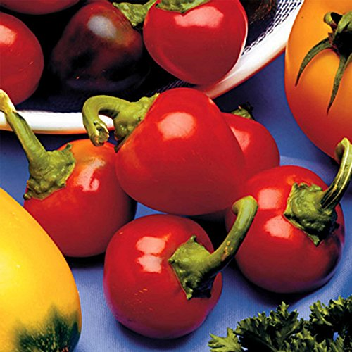 Red Cherry Sweet Pepper Garden Seeds - .25 oz - Non-GMO, Heirloom - Small Red Bell Peppers for Pickling or Salad - Vegetable Gardening Seed