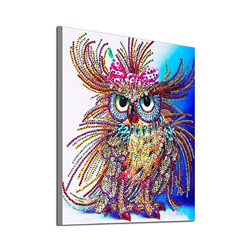 QHB Diamond Painting Night Owl 5D Rhinestone Home Decor DIY Gift for Friend Lover Parents -