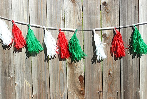 Mexican Party Decoration  Cinco De Mayo  Fiesta Party  Already Assembled 8 Ft  W 16 Tassels Tissue Paper  Red White And Green
