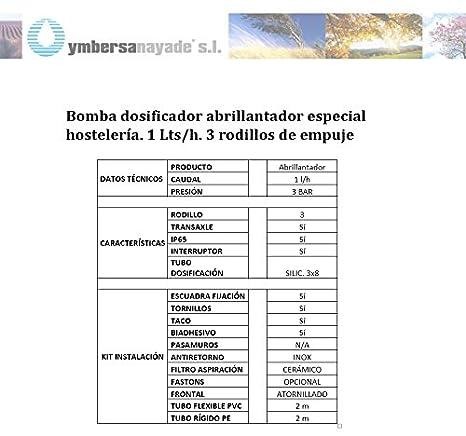 Bomba dosificador abrillantador especial hostelería. 1 Lts/h. 3 ...