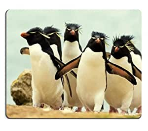 Landscapes Nature Flock Penguins Crowd Mouse Pads Customized Made to Order Support Ready 9 7/8 Inch (250mm) X 7 7/8 Inch (200mm) X 1/16 Inch (2mm) High Quality Eco Friendly Cloth with Neoprene Rubber MSD Mouse Pad Desktop Mousepad Laptop Mousepads Comfortable Computer Mouse Mat Cute Gaming Mouse pad